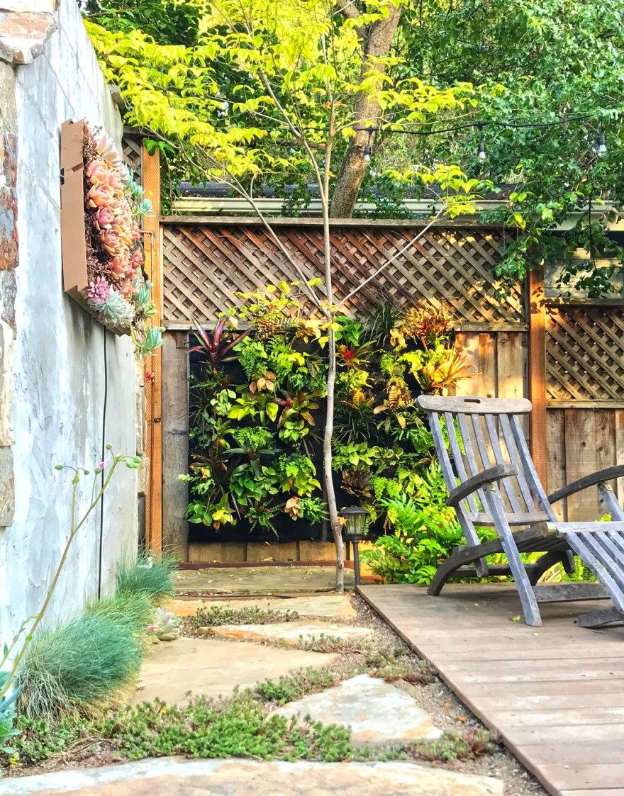 Backyard Vertical Garden