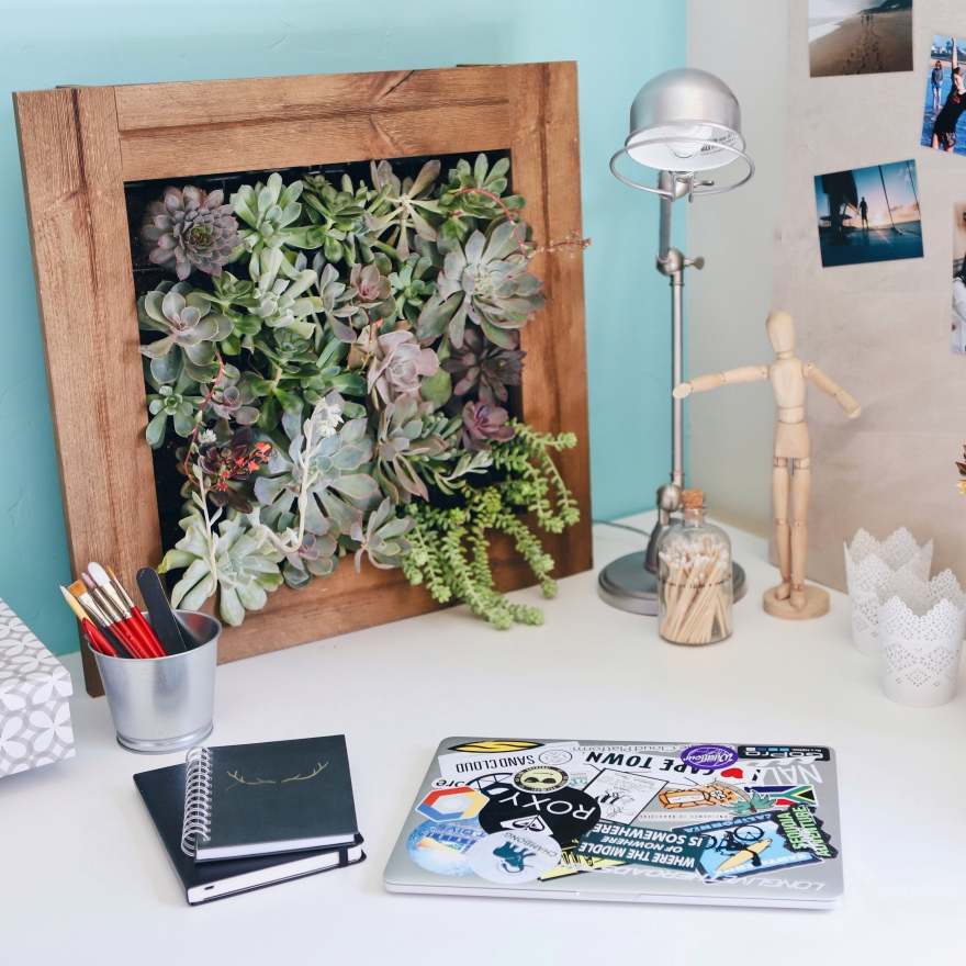 Succulents are the perfect way to decorate your new college living space! Learn how to build a Succulent Living Wall using the Planted Places Vertical Garden kit and get your dorm, apartment, or house ready for the new school year. This easy DIY project will brighten up your new small space—its the perfect dorm room decor life hack!