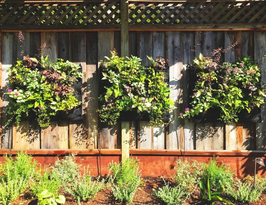 Beautiful DIY Living Wall